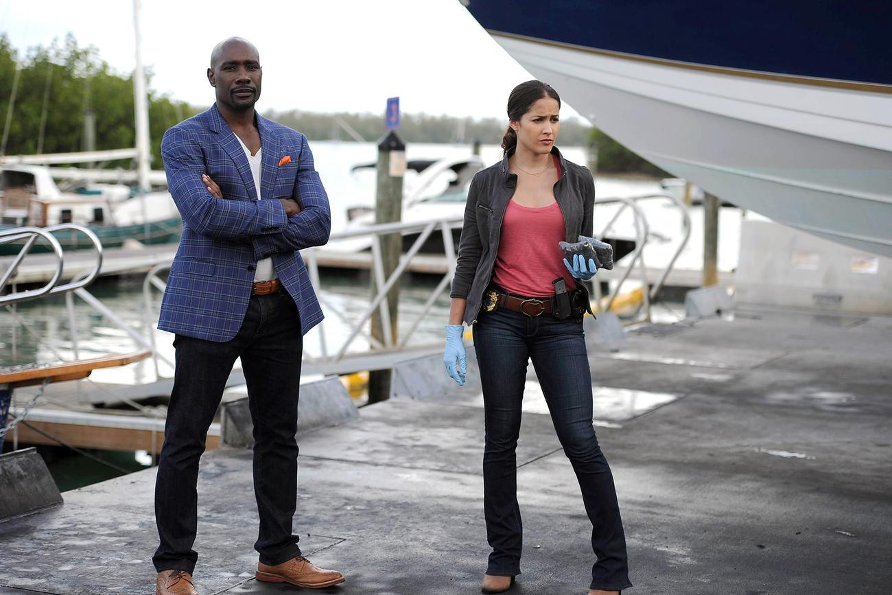 Rosewood_TV_Series-215317084-large
